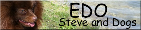 EDO Steve and Dogs