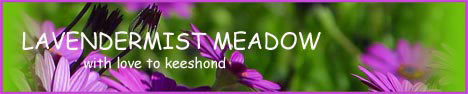 files/liebhaber/Grafiken/Zuechterbanner 468/Lavendermist-Meadow.jpg