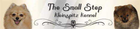 files/liebhaber/Grafiken/Zuechterbanner 468/The-Small-Step.jpg